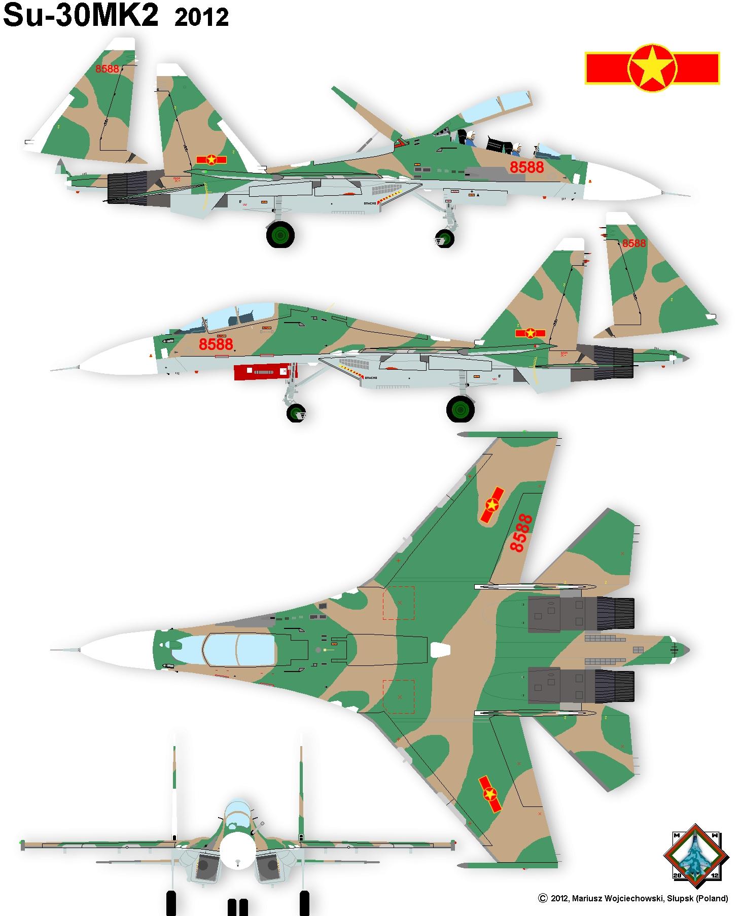Sukhoi Su-30 story in colours  Sukhoi Su-30 fighter